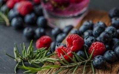 """""""Bioloģisko lauksaimniecības augu piena (kaņepju un sojas pupiņu) saldējuma eksperimentālā izstrāde ar dažādām ogām, augļu un dārzeņu piedevām"""""""